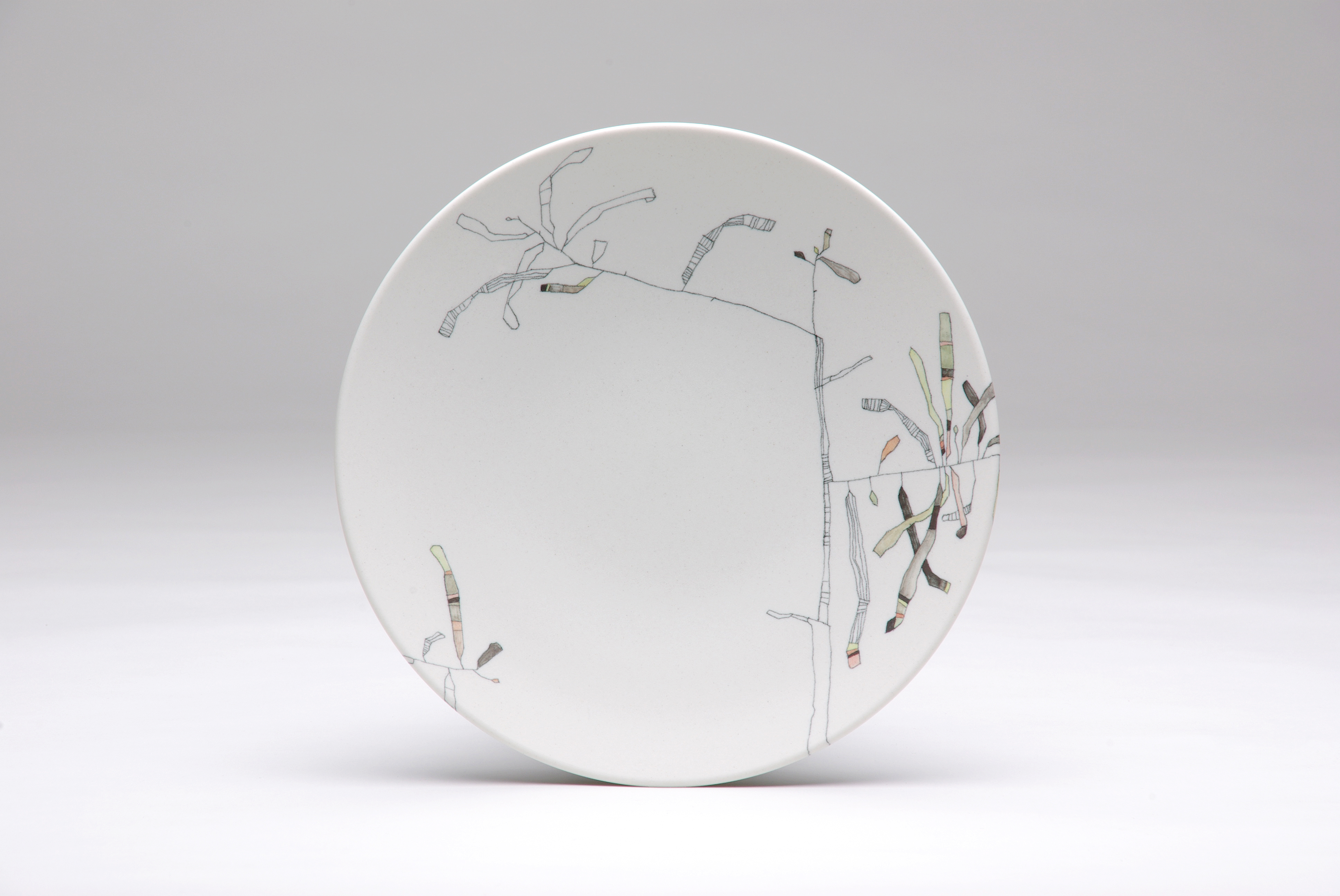 tania rollond banksia plate 2016